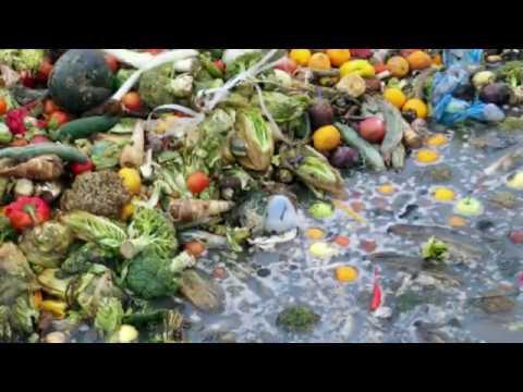 Compartir, reutilizar y reciclar