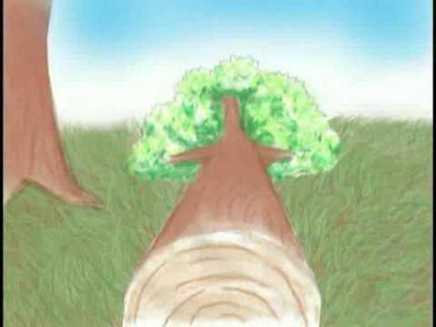 Cómo Respirar Sin Pulmones
