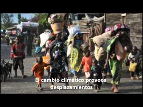 Salvaguardar el medioambiente: componente esencial en la erradicación de la pobreza
