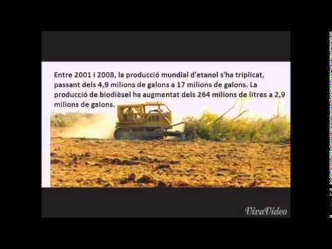 Biocombustibles = Hambre