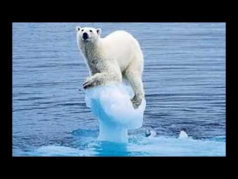 Por un mundo mejor contra el cambio climático