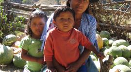 Educación y desarrollo. Manos unidas en América latina
