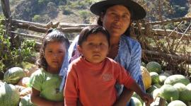 ACLO ayuda a la poblacion campesina del sur de Bolivia - Festival de Clipmetrajes - Festival de Cortometrajes