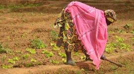 Las mujeres son las que menos contribuyen al cambio climático y las que más sufren sus consecuencias